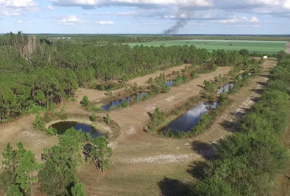 Fish Farm Homesite Babcock Ranch Ponds in Charlotte County, FL