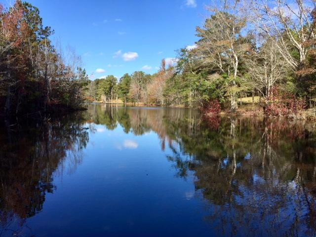 Harris County Hunting Property with Lake  in Harris County, GA