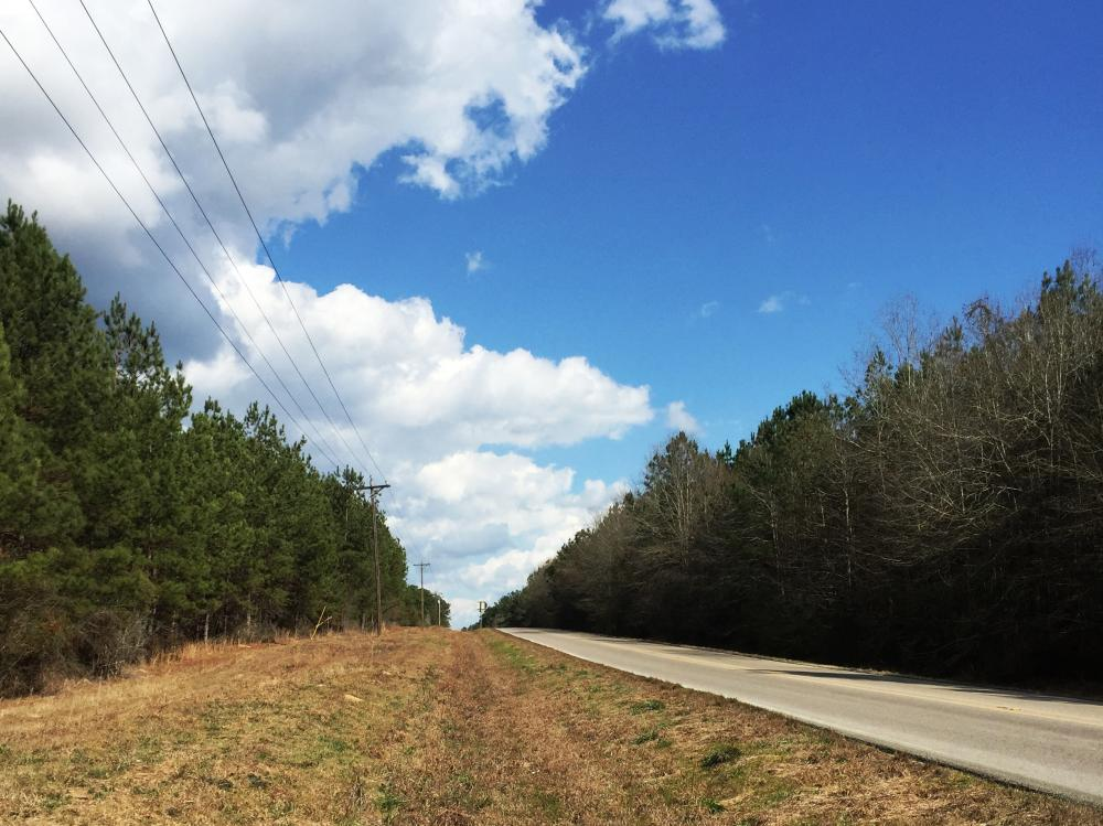 Hwy 29 Possible Residential Property in Perry County, MS