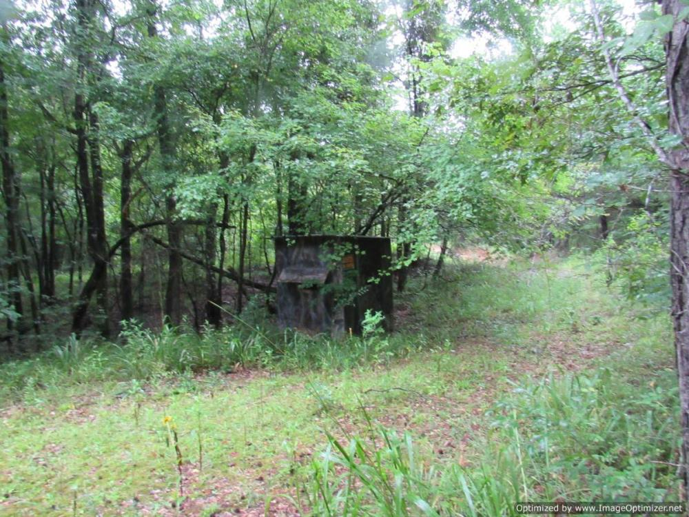 Secluded Hunting & Recreational Tract