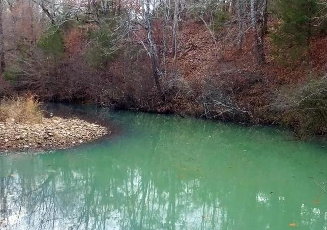 40+/- Acre Ouachita Mountain Hunting & Creek SEALED BID in Perry County, AR