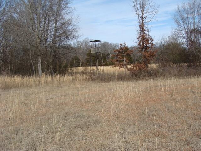 Wattensaw AG&F Hunting & Pasture 86 acres